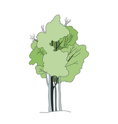 tree sketch architect hand drawing vector image