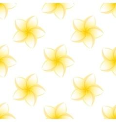 seamless plumeria isolated vector image