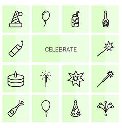 14 celebrate icons vector