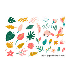 big set of bright tropical leaves and birds vector image