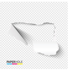 blank torn paper hole banner with cardboard edge vector image