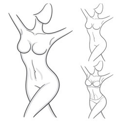elegant woman silhouettes in a linear sketch style vector image