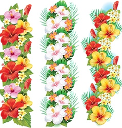 Garlands of hibiscus flowers vector image