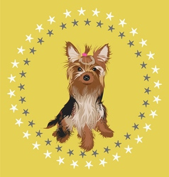 little dog -desgn vector image