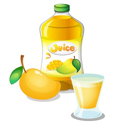 Mango juice drink vector image