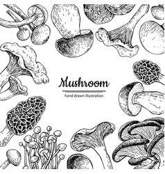 mushroom hand drawn frame isolated sketch vector image