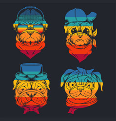pug dog head collection retro vector image