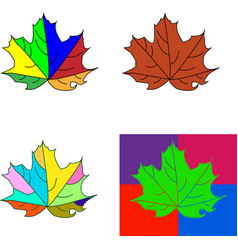 set of bright maple leaves isolated on white vector image