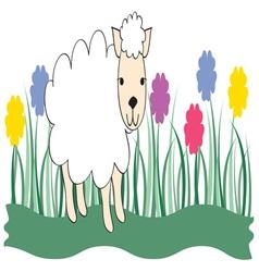 Spring Lamb vector