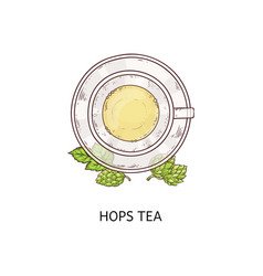 Top view on cup hops herbal tea vector