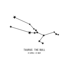 zodiac constellation taurus vector image