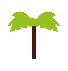 Tree palm isolated icon vector