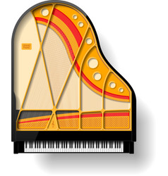 Grand piano interior vector
