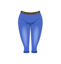 denim breeches knickerbockers vector image