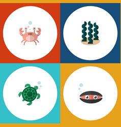 Flat icon marine set of tortoise alga cancer and vector