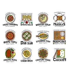 Food chinese cuisine isolated national dishes vector