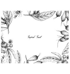 Hand drawn frame of tropical fruits background vector