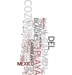 Mexico beaches playa del carmen and cozumel text vector