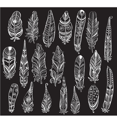 Set of white Feathers on black background vector image