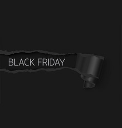 black friday sale banner realistic torn paper vector image