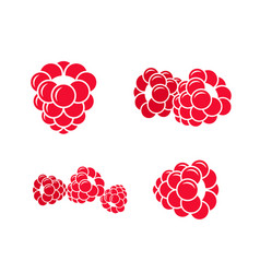 Raspberries icon set vector