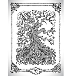 Symbol four calendar year seasons and old tree vector