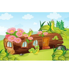 worms and wooden house vector image