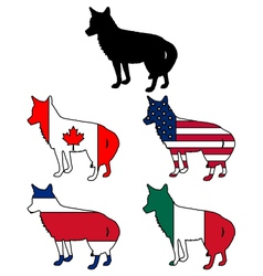 Coyote flags vector