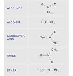 organic chemical functions vector image