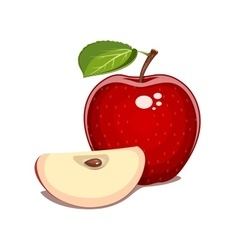 Red apple with leaf and clove vector image