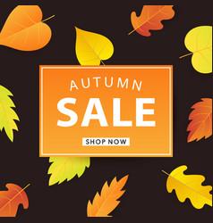 autumn sale web banner template vector image