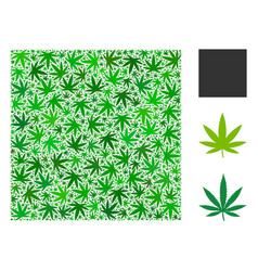 Filled square composition of cannabis vector