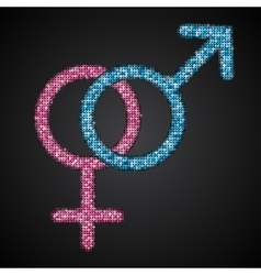 Gender Men Women Blue Pink Sequins Icon vector image