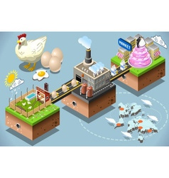 Isometric Infographic Egg Products Distribution vector