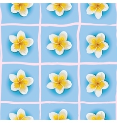 Seamless pattern with Plumeria or vector