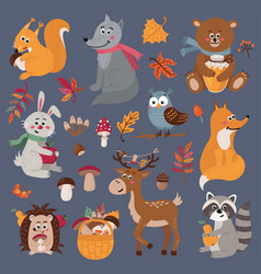 Set cute forest animals in cartoon style vector
