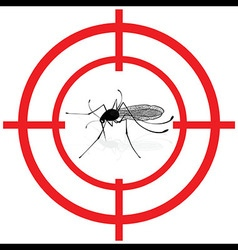Signaling mosquitoes with mosquito target gnat vector