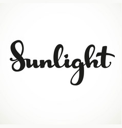 sunlight calligraphic inscription on a white vector image