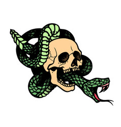 tattoo with skull and snakeisolated vector image