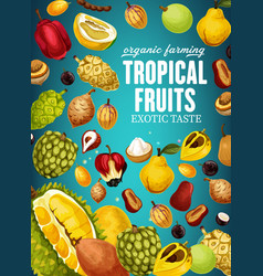 Tropical fruits poster for natural vegetarian food vector