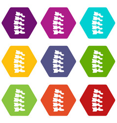 Vertebrae icons set 9 vector