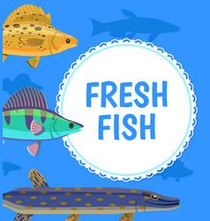 water animal fresh fish blue postcard vector image