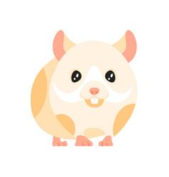 animal pet - hamster vector image