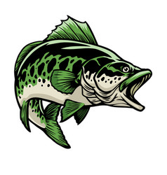 big largemouth bass fish vector image