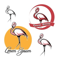Flamingo set vector image
