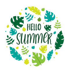 Hello summer lettering with summer leaves vector