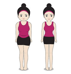 Change Fat to shapely vector image