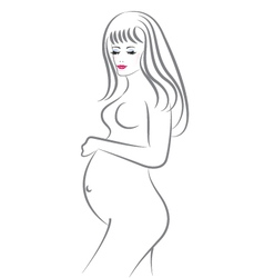 Pregnant beauty woman vector image vector image