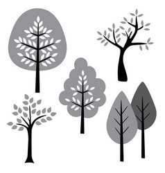 black white gray trees vector image