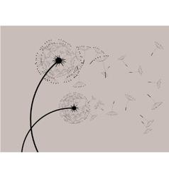 Dandelions in the wind vector image